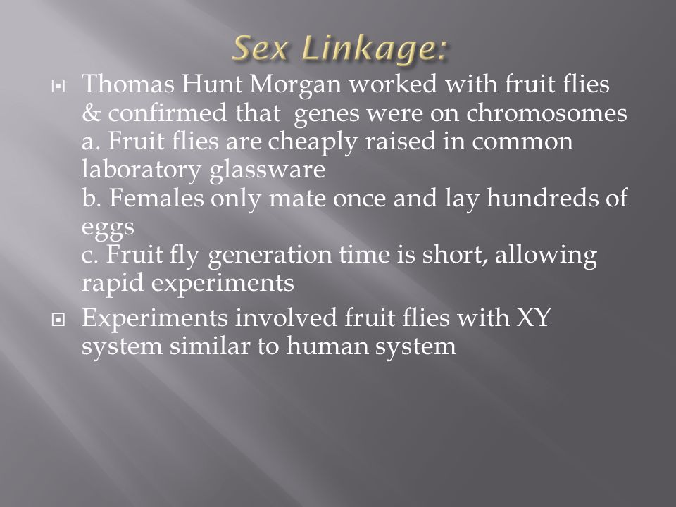 Thomas Hunt Morgan worked with fruit flies & confirmed that genes were on chromosomes a.