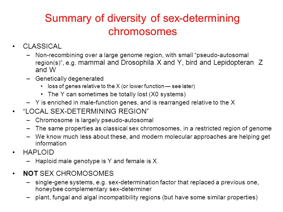Summary of diversity of sex-determining chromosomes CLASSICAL –Non-recombining over a large genome region, with small pseudo-autosomal region(s) , e.g.
