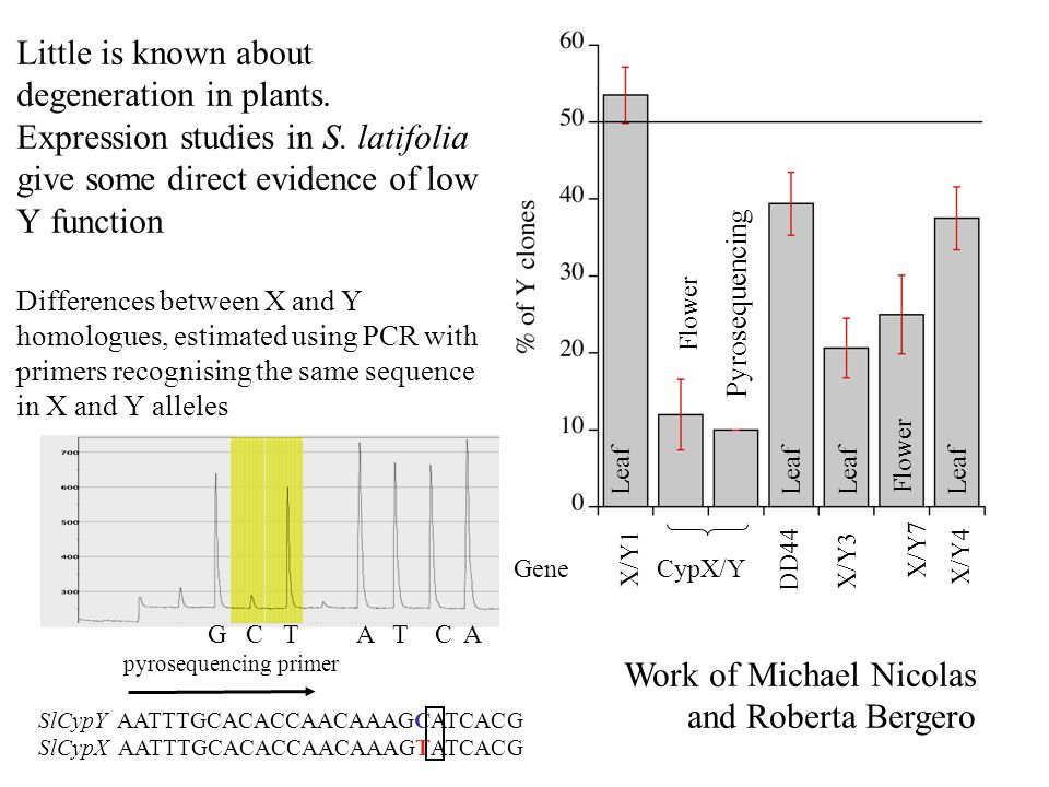 Little is known about degeneration in plants.Expression studies in S.