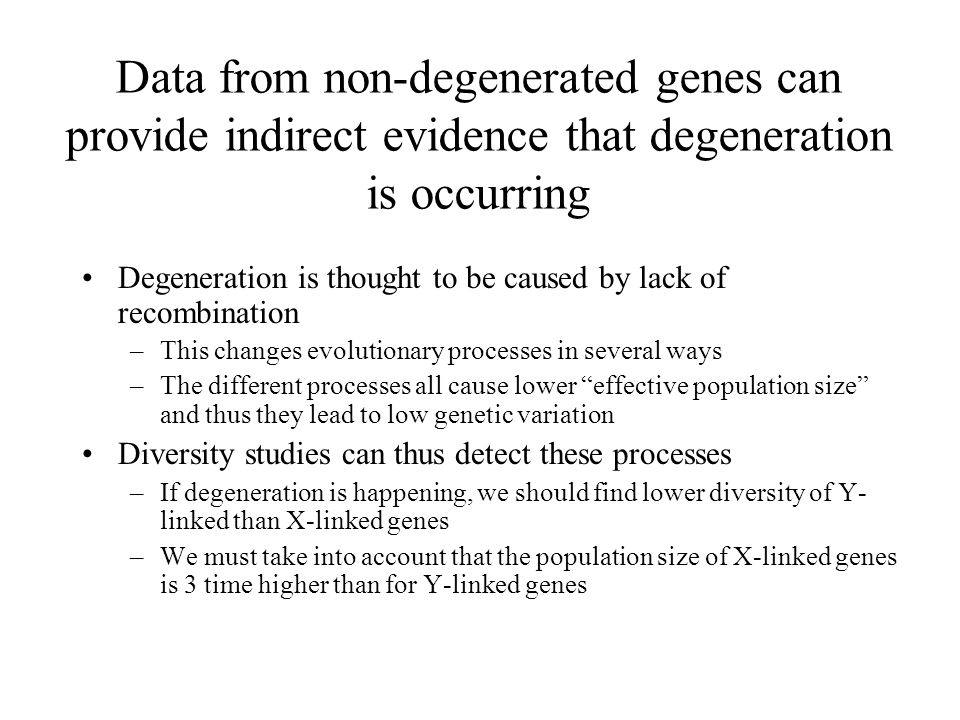 Data from non-degenerated genes can provide indirect evidence that degeneration is occurring Degeneration is thought to be caused by lack of recombination –This changes evolutionary processes in several ways –The different processes all cause lower effective population size and thus they lead to low genetic variation Diversity studies can thus detect these processes –If degeneration is happening, we should find lower diversity of Y- linked than X-linked genes –We must take into account that the population size of X-linked genes is 3 time higher than for Y-linked genes