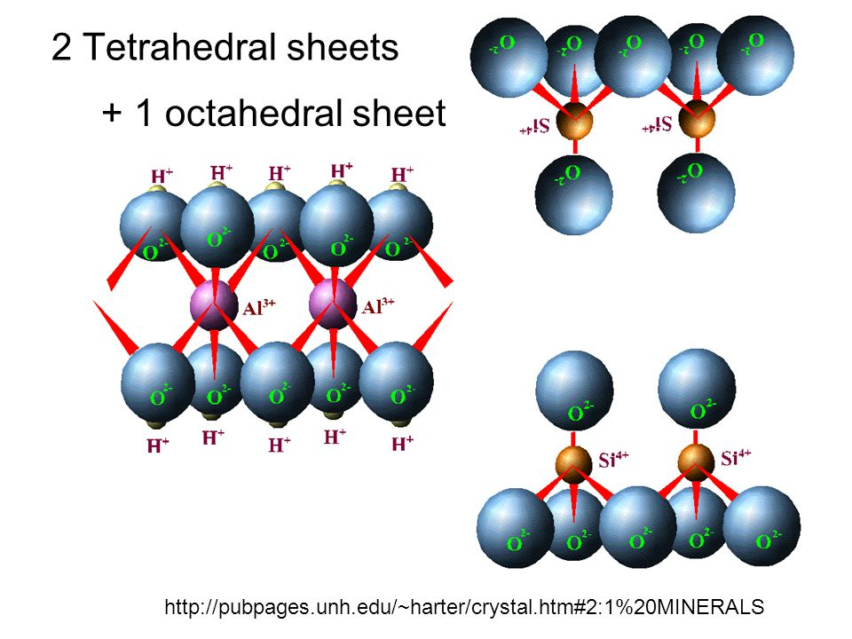 2 Tetrahedral sheets http://pubpages.unh.edu/~harter/crystal.htm#2:1%20MINERALS + 1 octahedral sheet