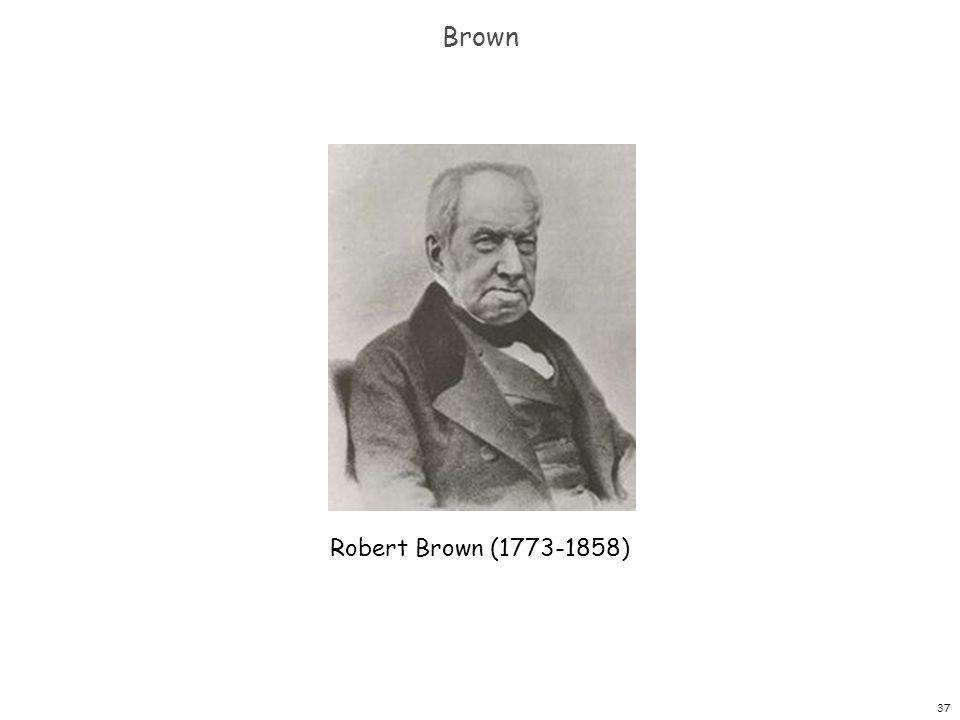 37 Brown Robert Brown (1773-1858)