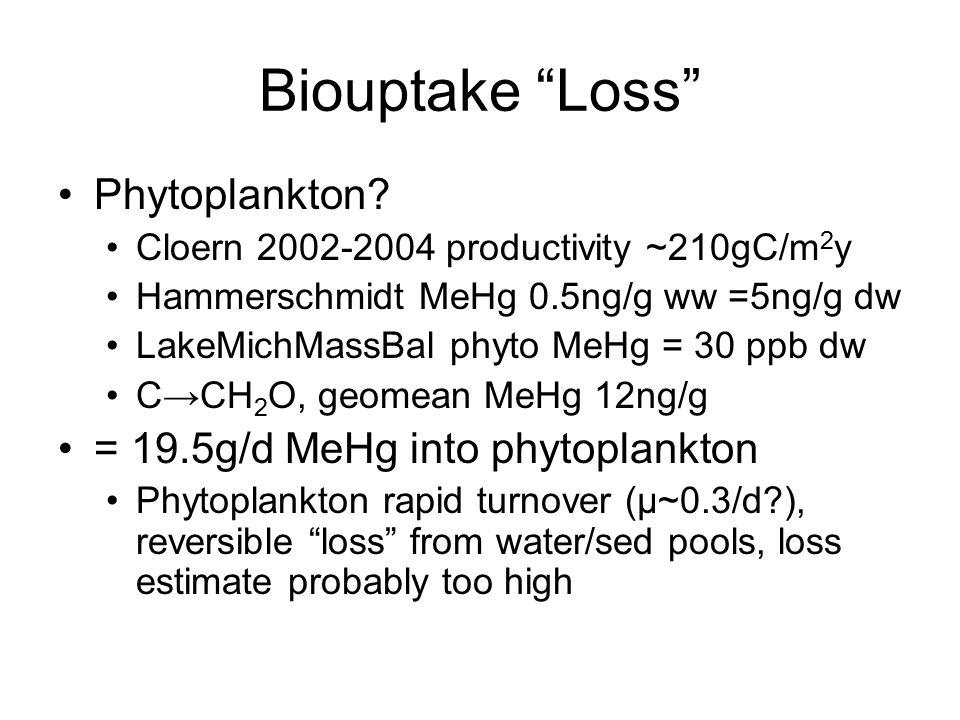 Biouptake Loss Phytoplankton.