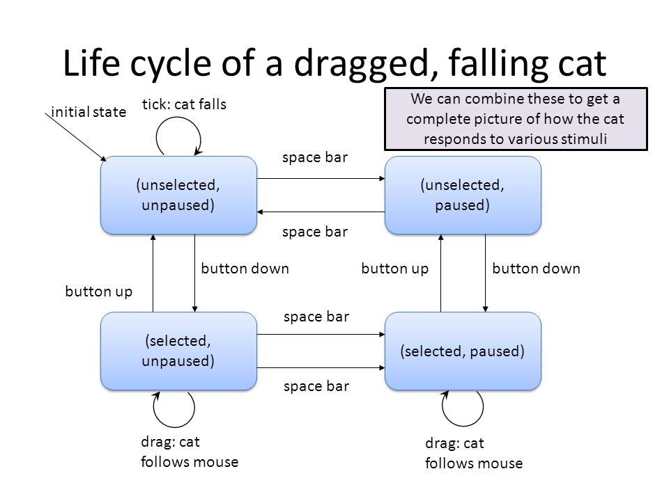 Life cycle of a dragged, falling cat (unselected, unpaused) (selected, paused) (unselected, paused) (selected, unpaused) initial state drag: cat follows mouse button down button up space bar button up button down space bar drag: cat follows mouse tick: cat falls We can combine these to get a complete picture of how the cat responds to various stimuli