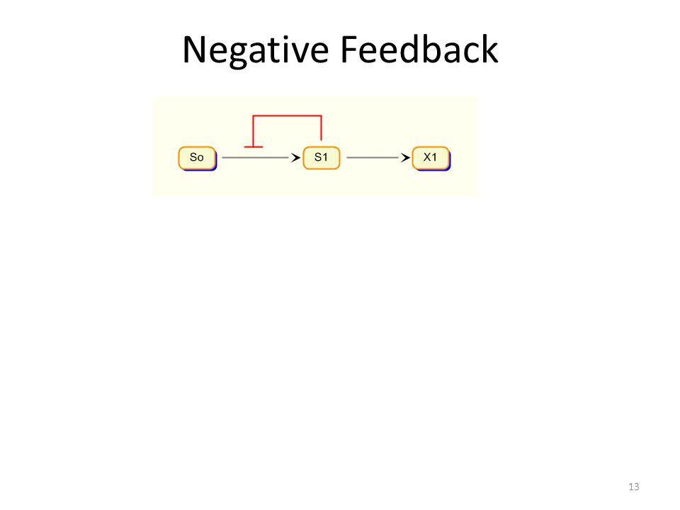 Negative Feedback 13