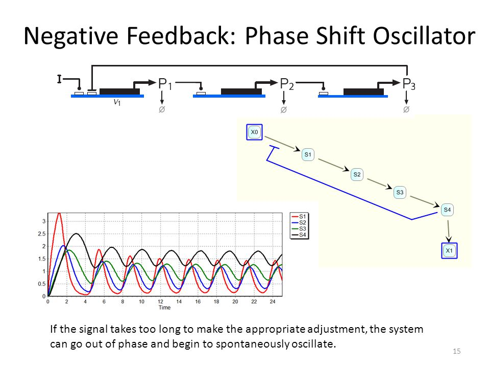 Negative Feedback: Phase Shift Oscillator If the signal takes too long to make the appropriate adjustment, the system can go out of phase and begin to spontaneously oscillate.