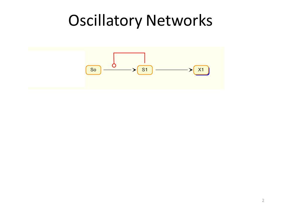 Natural Oscillators 33 1.Circadian rhythms (eg Drosophila, 24 hour period, feedback oscillator) 2.Ca++ Oscillations 3.Glycolytic Oscillations* (relaxation oscillator) 4.Signaling Pathway Oscillations (P53, ERK, NF-kB) 5.Cell Cycle (relaxation oscillator) 6.Synchronous Rhythmic Flashing Of Fireflies 7.Segmentation during development 8.Many examples of chemical oscillators (mostly relaxation oscillators) 9.….