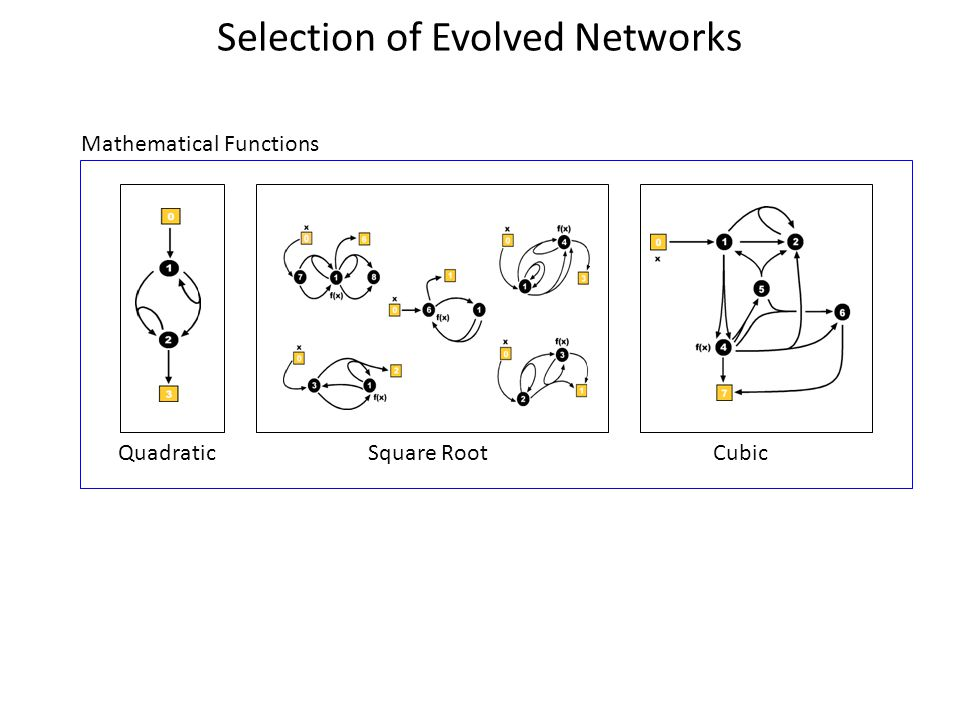 Selection of Evolved Networks Mathematical Functions QuadraticSquare RootCubic