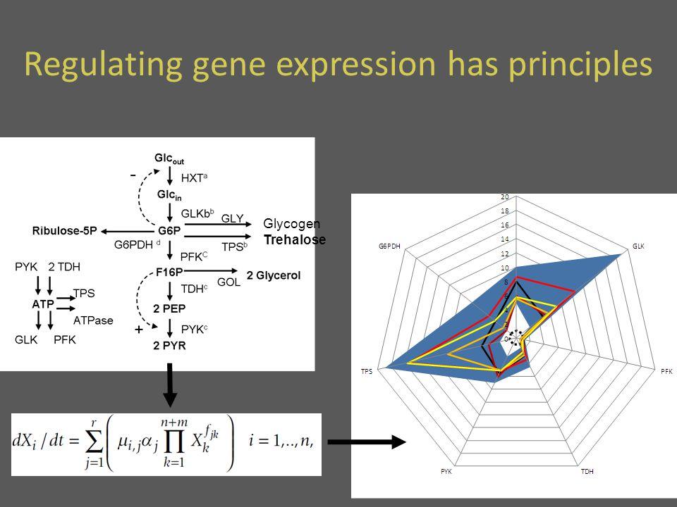 Glycogen Trehalose Regulating gene expression has principles