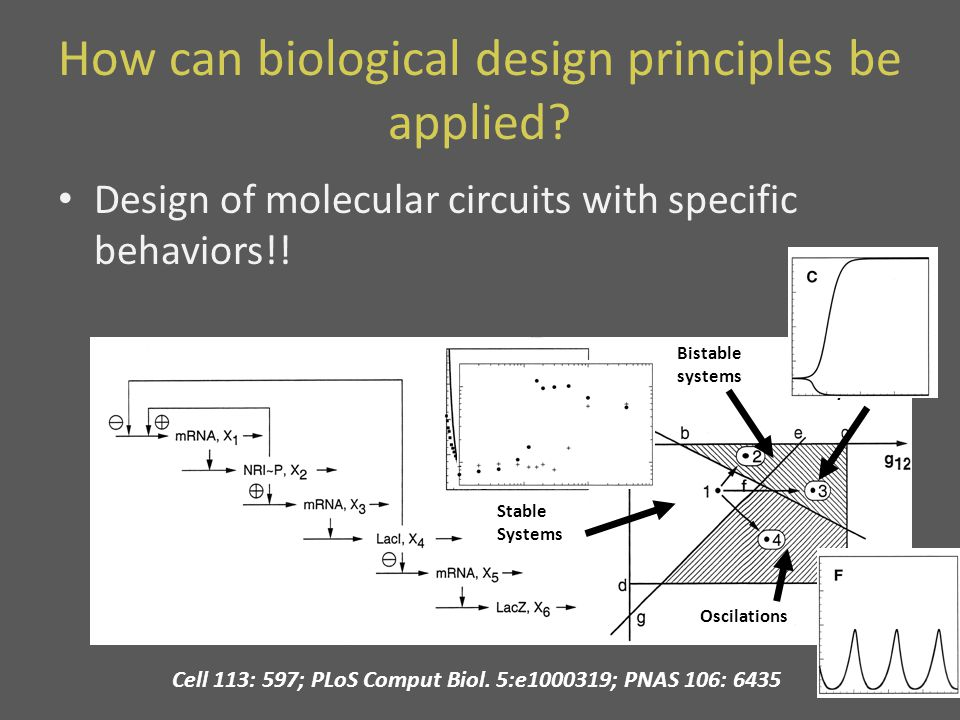 How can biological design principles be applied.