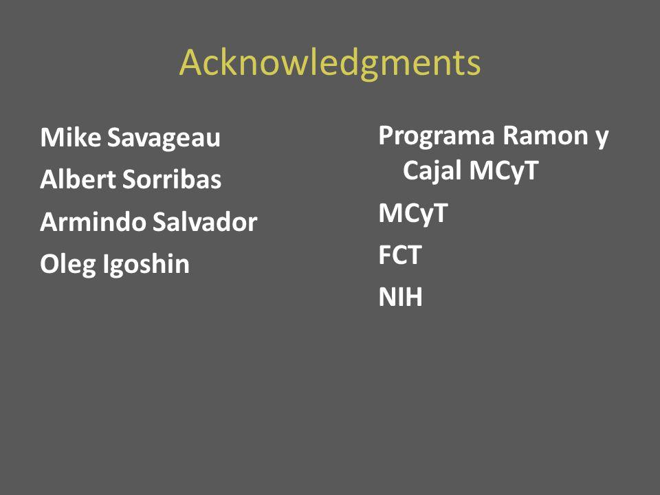 Acknowledgments Mike Savageau Albert Sorribas Armindo Salvador Oleg Igoshin Programa Ramon y Cajal MCyT MCyT FCT NIH