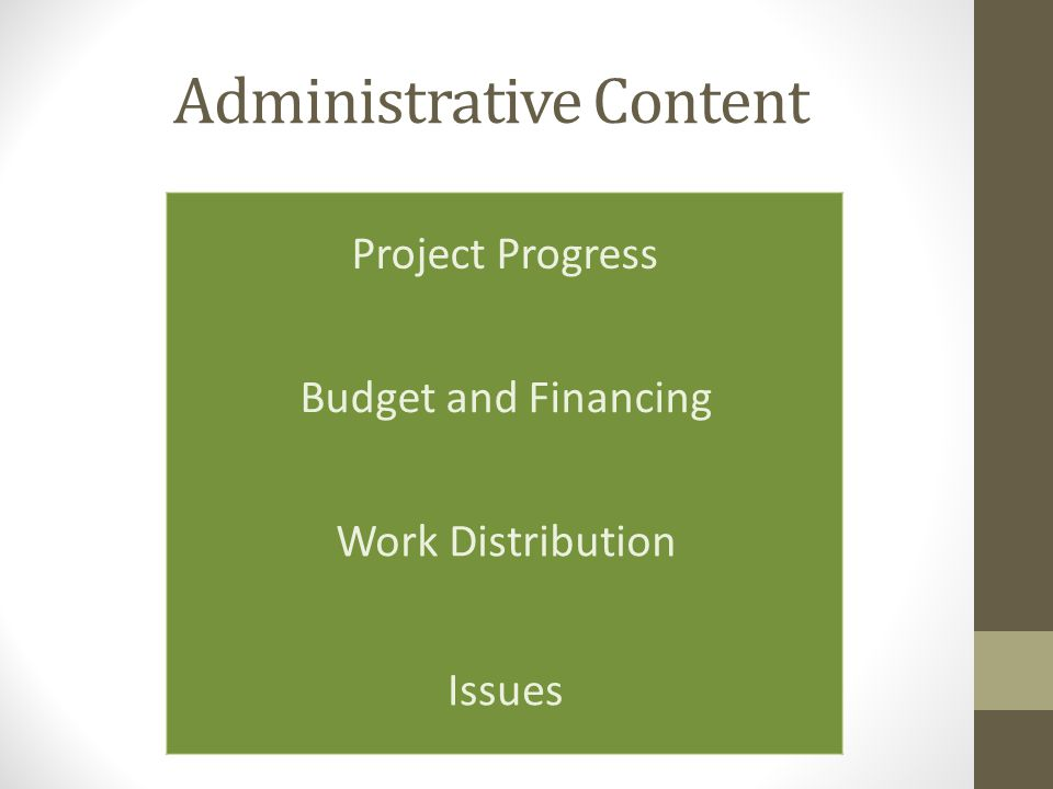 Administrative Content Project Progress Budget and Financing Work Distribution Issues