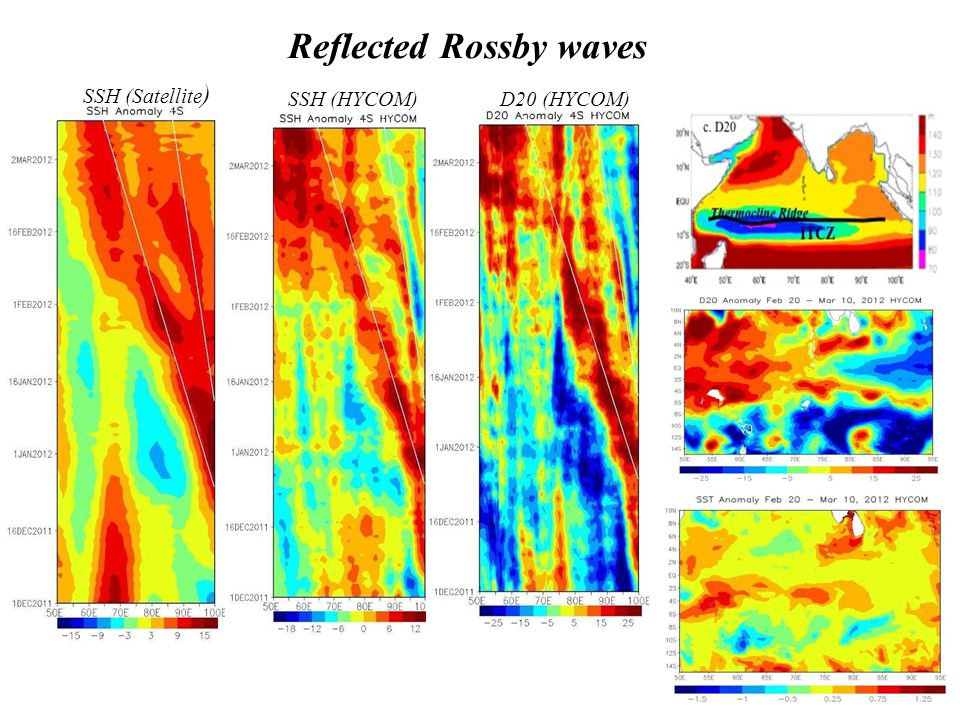 Reflected Rossby waves SSH (Satellite ) SSH (HYCOM)D20 (HYCOM)