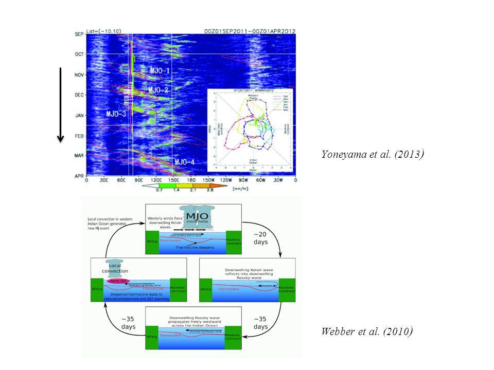 Yoneyama et al. (2013 ) Webber et al. (2010 )