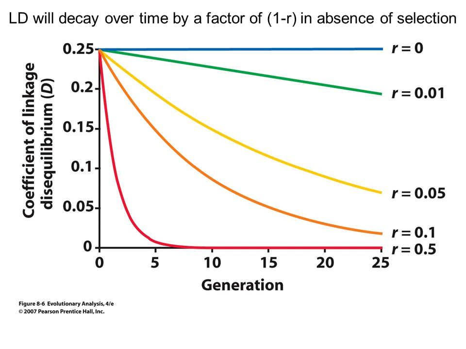 LD will decay over time by a factor of (1-r) in absence of selection