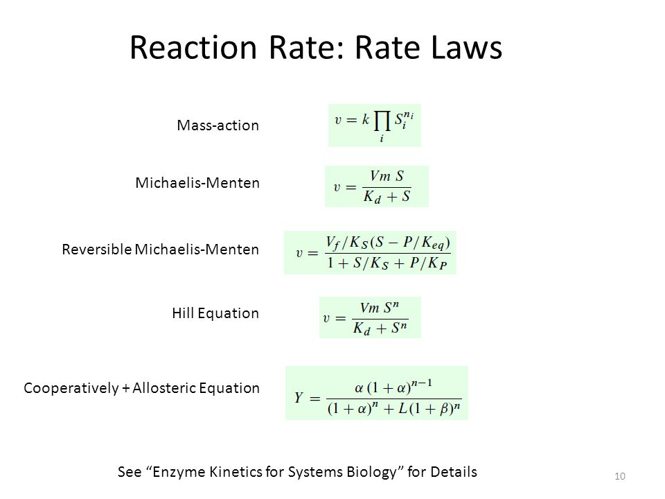 """10 Reaction Rate: Rate Laws Mass-action Michaelis-Menten Reversible Michaelis-Menten Hill Equation Cooperatively + Allosteric Equation See """"Enzyme Kin"""