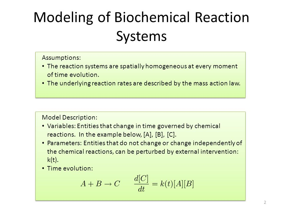 Modeling of Biochemical Reaction Systems 2 Assumptions: The reaction systems are spatially homogeneous at every moment of time evolution. The underlyi