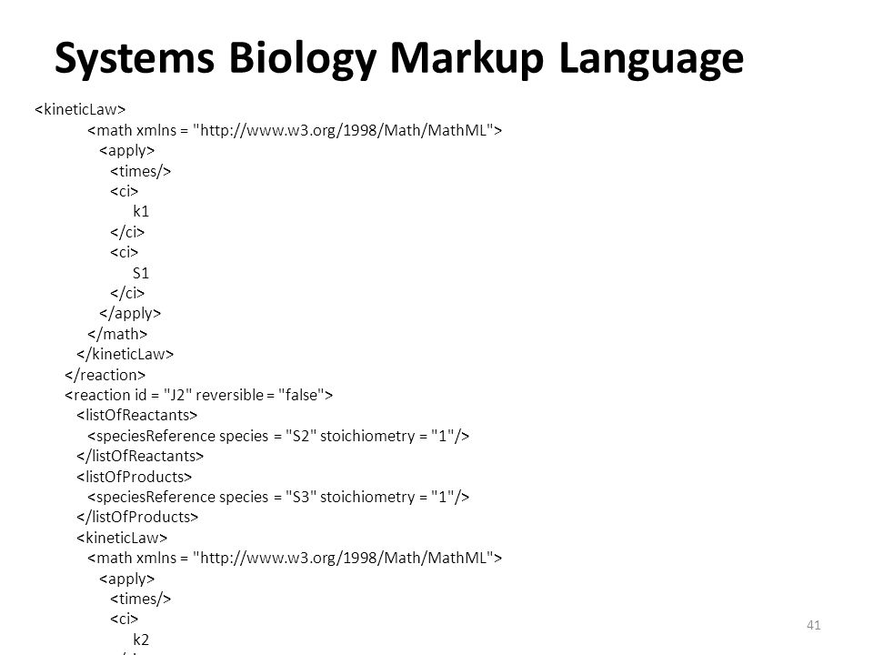 Systems Biology Markup Language 41 k1 S1 k2 S2