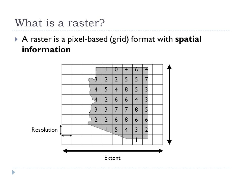 What is a raster.