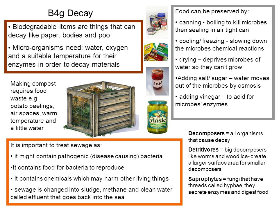 B4g Decay Biodegradable items are things that can decay like paper, bodies and poo Micro-organisms need: water, oxygen and a suitable temperature for their enzymes in order to decay materials Food can be preserved by: canning - boiling to kill microbes then sealing in air tight can cooling/ freezing - slowing down the microbes chemical reactions drying – deprives microbes of water so they can't grow Adding salt/ sugar – water moves out of the microbes by osmosis adding vinegar – to acid for microbes' enzymes Decomposers = all organisms that cause decay Detritivores = big decomposers like worms and woodlice- create a larger surface area for smaller decomposers Saprophytes = fungi that have threads called hyphae, they secrete enzymes and digest food Making compost requires food waste e.g.