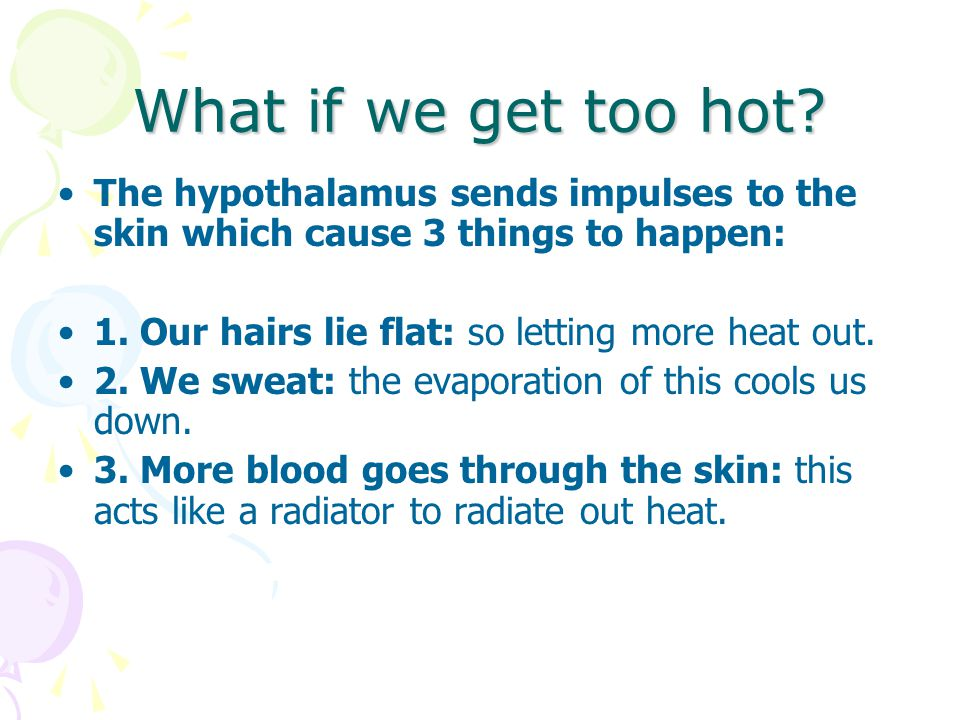 What if we get too hot? The hypothalamus sends impulses to the skin which cause 3 things to happen: 1. Our hairs lie flat: so letting more heat out. 2