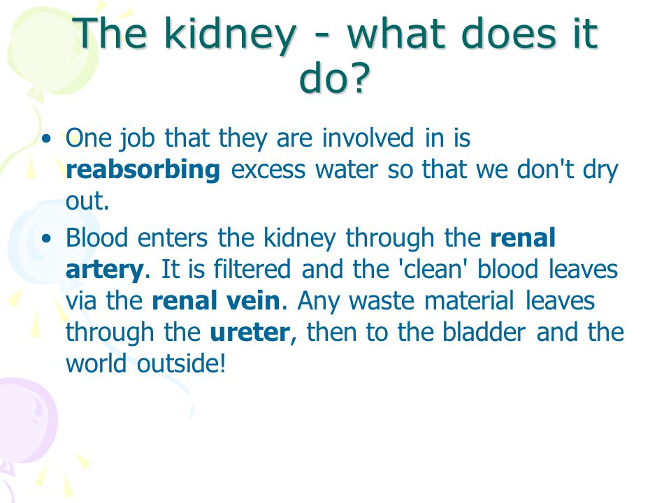 The kidney - what does it do? One job that they are involved in is reabsorbing excess water so that we don't dry out. Blood enters the kidney through