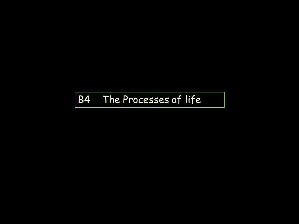 B4 B5 B6 Revision B4 The Processes of life B6 Growth and Development B6 Brain and Mind