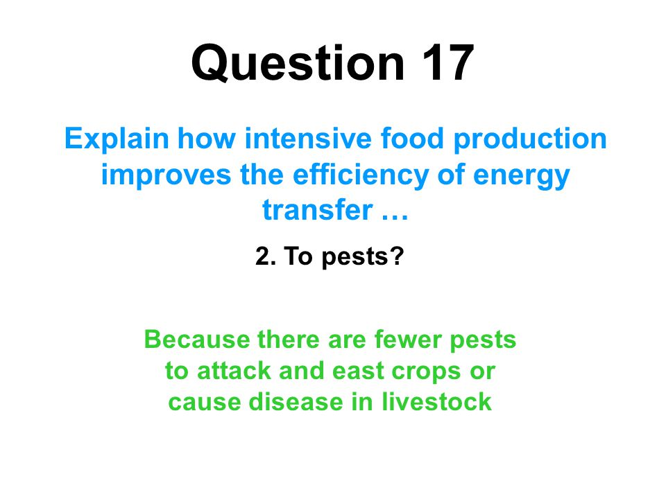 Question 17 Explain how intensive food production improves the efficiency of energy transfer … 2. To pests? Because there are fewer pests to attack an