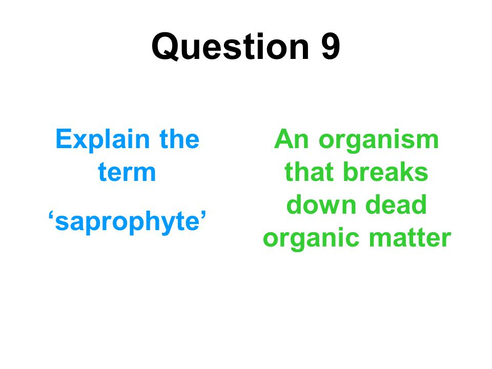 Question 9 Explain the term 'saprophyte' An organism that breaks down dead organic matter