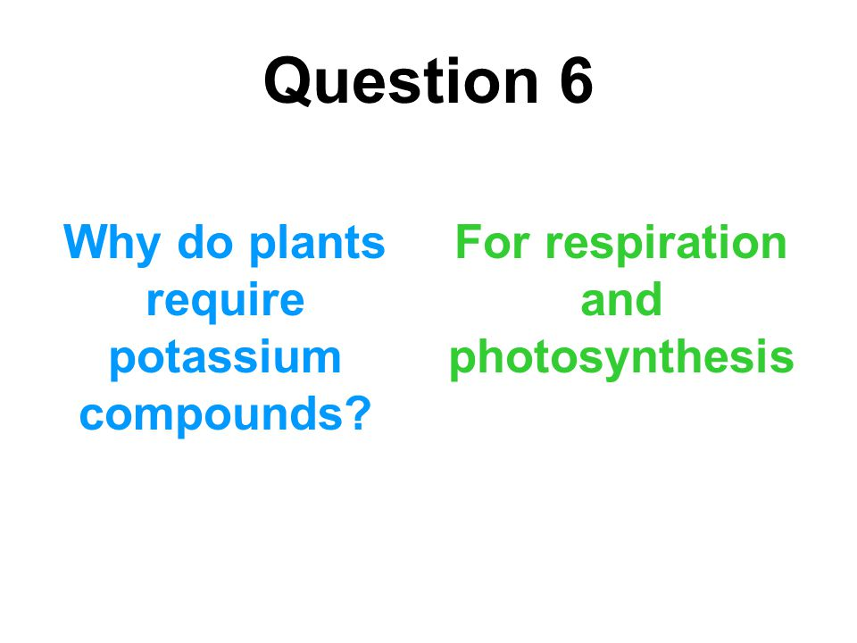 Question 6 Why do plants require potassium compounds? For respiration and photosynthesis