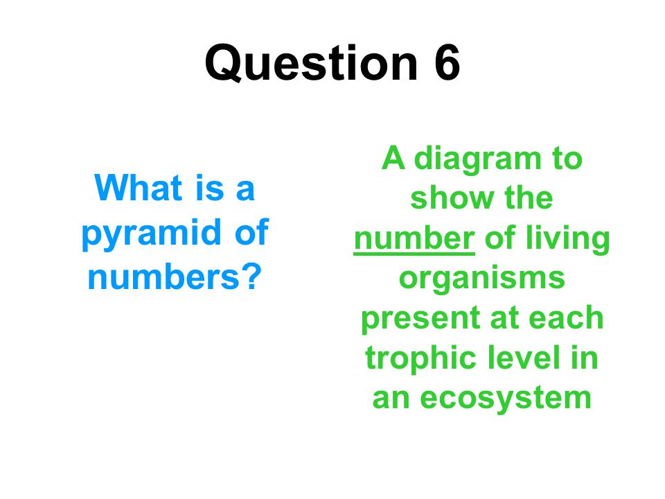 Question 6 What is a pyramid of numbers? A diagram to show the number of living organisms present at each trophic level in an ecosystem