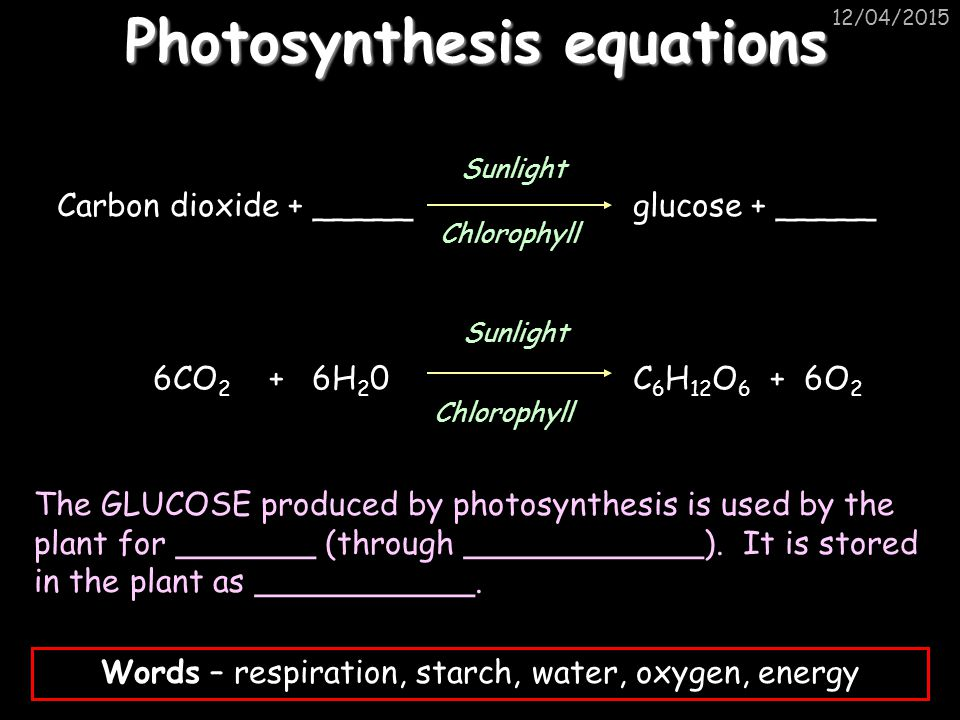 12/04/2015 Carbon dioxide + _____ glucose + _____ 6CO 2 + 6H 2 0C 6 H 12 O 6 + 6O 2 Sunlight Chlorophyll Sunlight Chlorophyll The GLUCOSE produced by photosynthesis is used by the plant for _______ (through ____________).