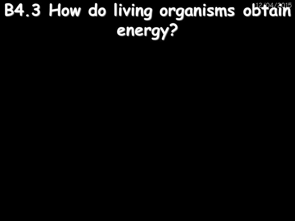 12/04/2015 B4.3 How do living organisms obtain energy?