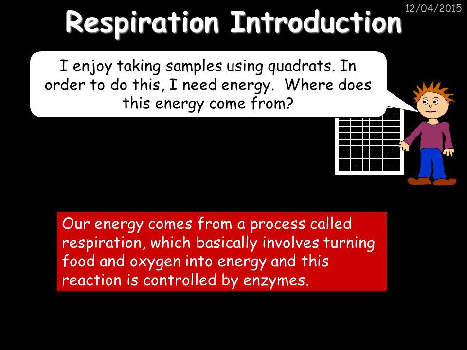12/04/2015 Respiration Introduction I enjoy taking samples using quadrats.