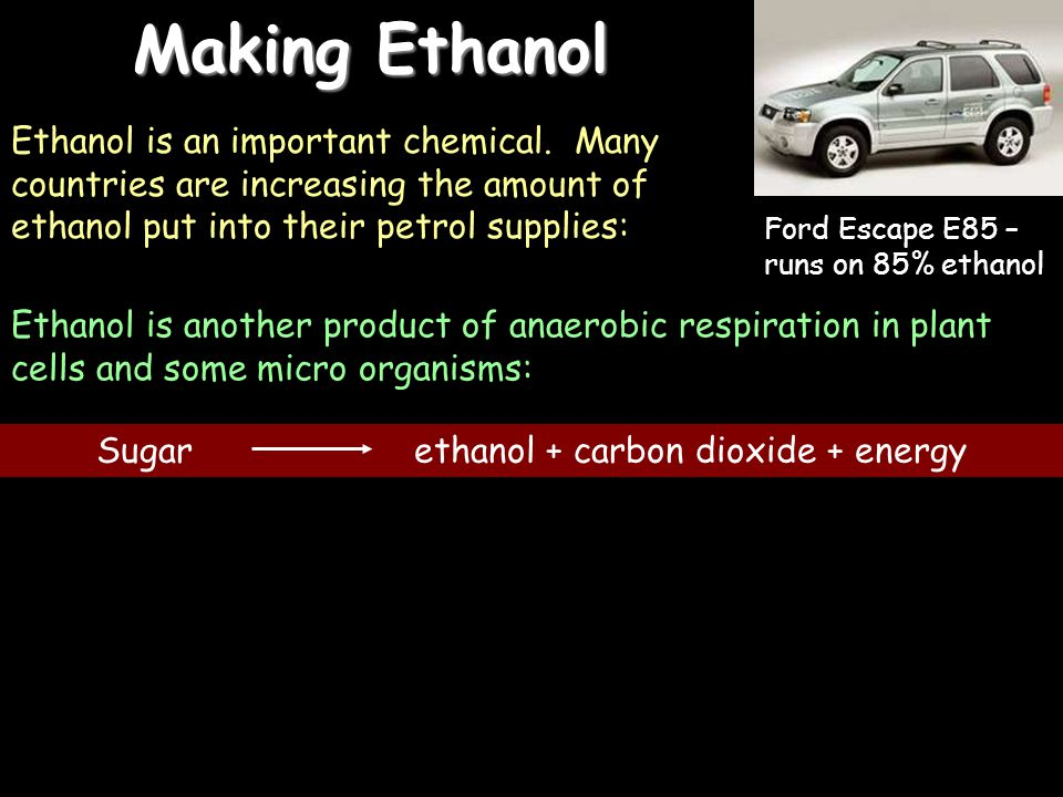 12/04/2015 Making Ethanol Ethanol is an important chemical.