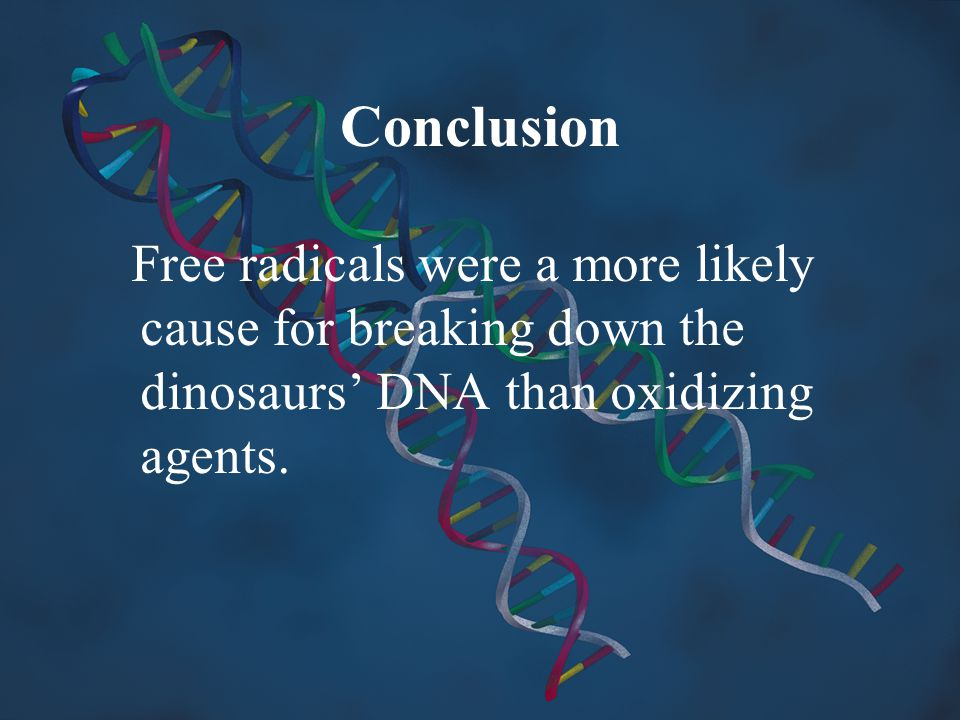 Conclusion Free radicals were a more likely cause for breaking down the dinosaurs' DNA than oxidizing agents.
