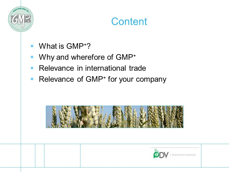 Content  What is GMP + .