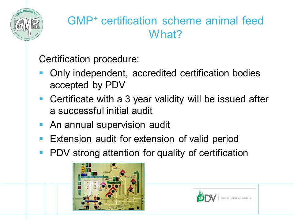 GMP + certification scheme animal feed What.