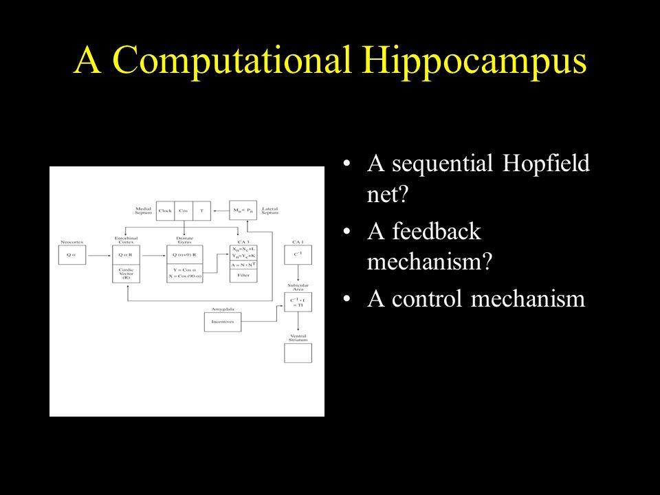A Computational Hippocampus A sequential Hopfield net? A feedback mechanism? A control mechanism