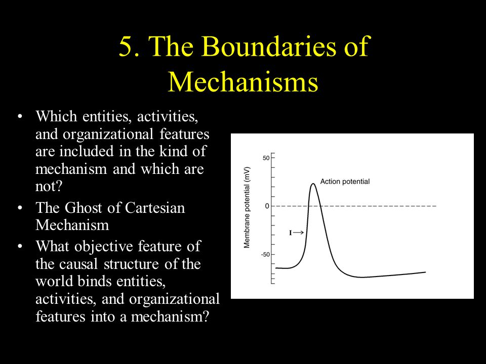 5. The Boundaries of Mechanisms Which entities, activities, and organizational features are included in the kind of mechanism and which are not? The G