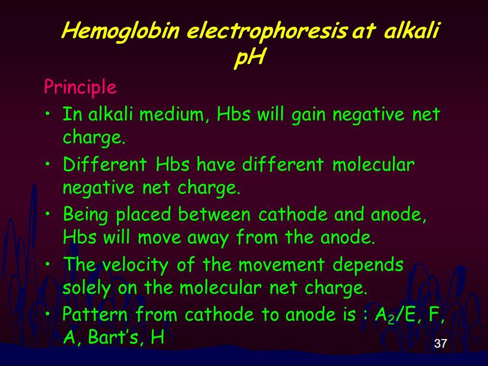 37 Hemoglobin electrophoresis at alkali pH Principle In alkali medium, Hbs will gain negative net charge.