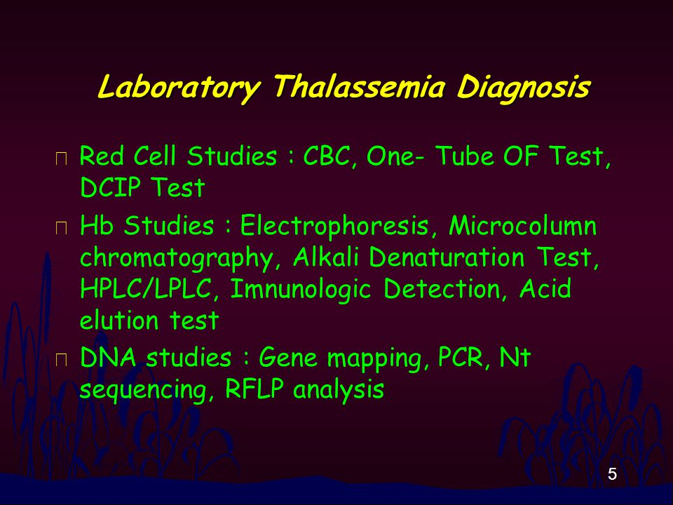 5 Laboratory Thalassemia Diagnosis n Red Cell Studies : CBC, One- Tube OF Test, DCIP Test n Hb Studies : Electrophoresis, Microcolumn chromatography, Alkali Denaturation Test, HPLC/LPLC, Imnunologic Detection, Acid elution test n DNA studies : Gene mapping, PCR, Nt sequencing, RFLP analysis