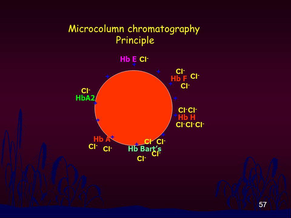 57 + + + + + + + + + + + Hb A HbA2 Hb F Hb E Hb H Hb Bart's Cl - Microcolumn chromatography Principle