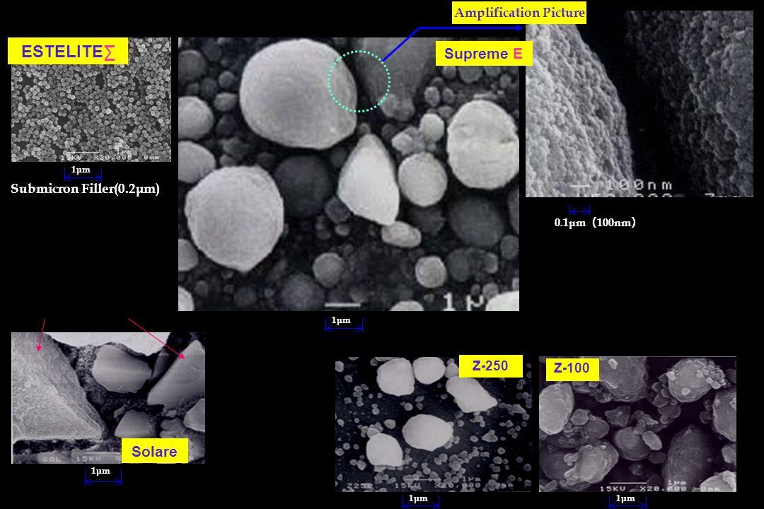 Others Companies Filler(SEM) Solare 1μm ESTELITE∑ 1μm Supreme E Amplification Picture 0.1μm ( 100nm ) 1μm Z-250 Z-100 Filler Cluster (0.6 ~ 1.4μm) ・ N