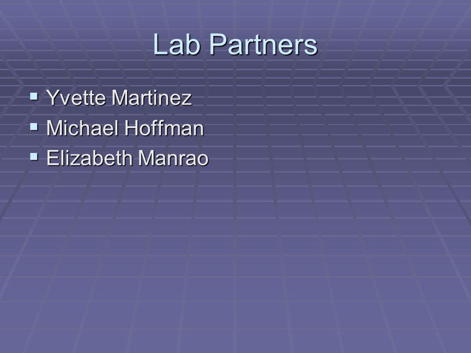 Lab Partners  Yvette Martinez  Michael Hoffman  Elizabeth Manrao