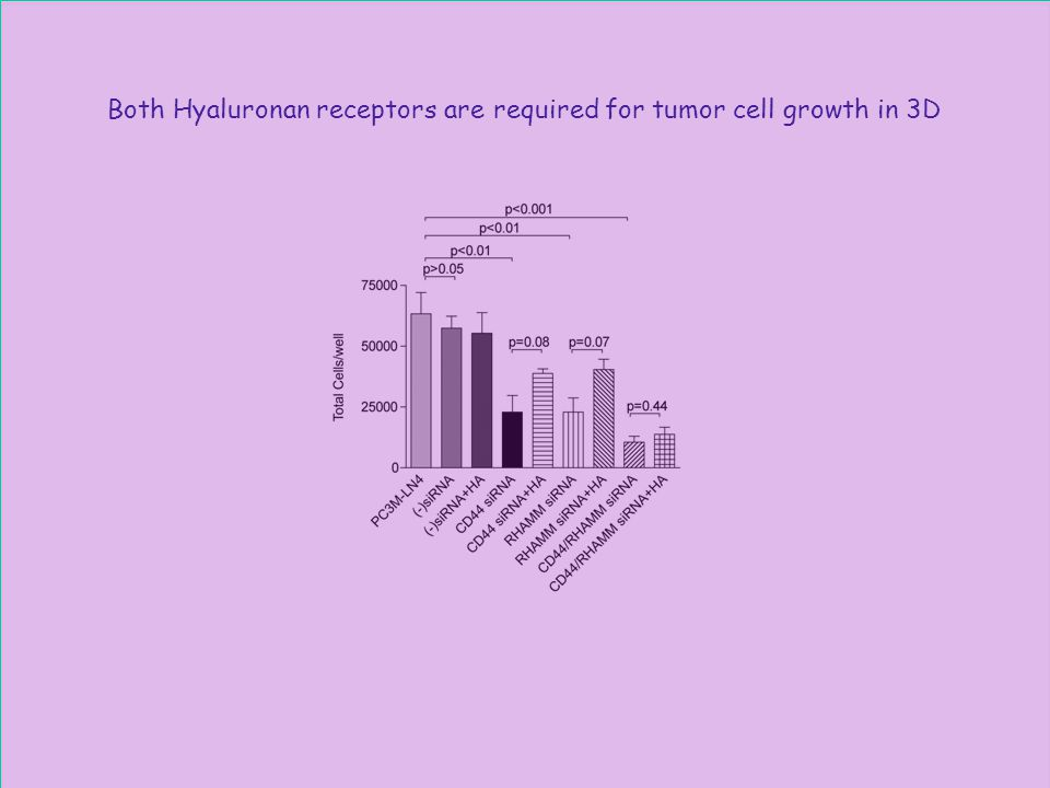 Both Hyaluronan receptors are required for tumor cell growth in 3D