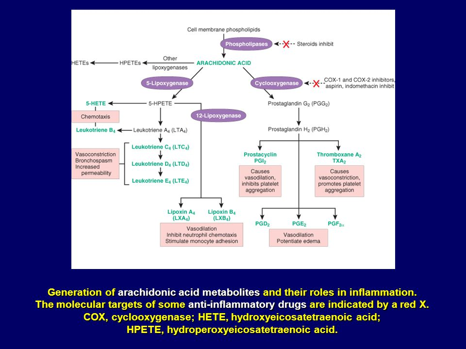 Generation of arachidonic acid metabolites and their roles in inflammation. The molecular targets of some anti-inflammatory drugs are indicated by a r