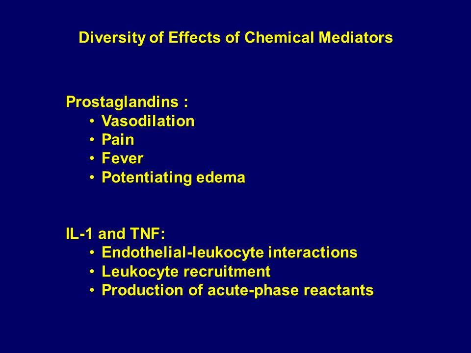 Summary of Mediators of Acute Inflammation ACTION MediatorSourceVascular LeakageChemotaxis Other Histamine and serotonin Mast cells, platelets+- BradykininPlasma substrate+-Pain C3aPlasma protein via liver+-Opsonic fragment (C3b) C5aMacrophages++ Leukocyte adhesion, activation Prostaglandins Mast cells, from membrane phospholipids Potentiate other mediators -Vasodilatation, pain, fever Leukotriene B 4 Leukocytes-+ Leukocyte adhesion, activation Leukotrienes C 4 D 4 E 4 Leukocytes, mast cells+- Bronchoconstriction, vasoconstriction Platelet Activating Factor (PAF) Leukocytes, mast cells++ Bronchoconstriction, leukocyte priming IL-1 and TNFMacrophages, other-+ Acute-phase reactions, endothelial activation ChemokinesLeukocytes, others-+Leukocyte activation Macrophages, endothelium ++Vasodilatation, cytotoxicity