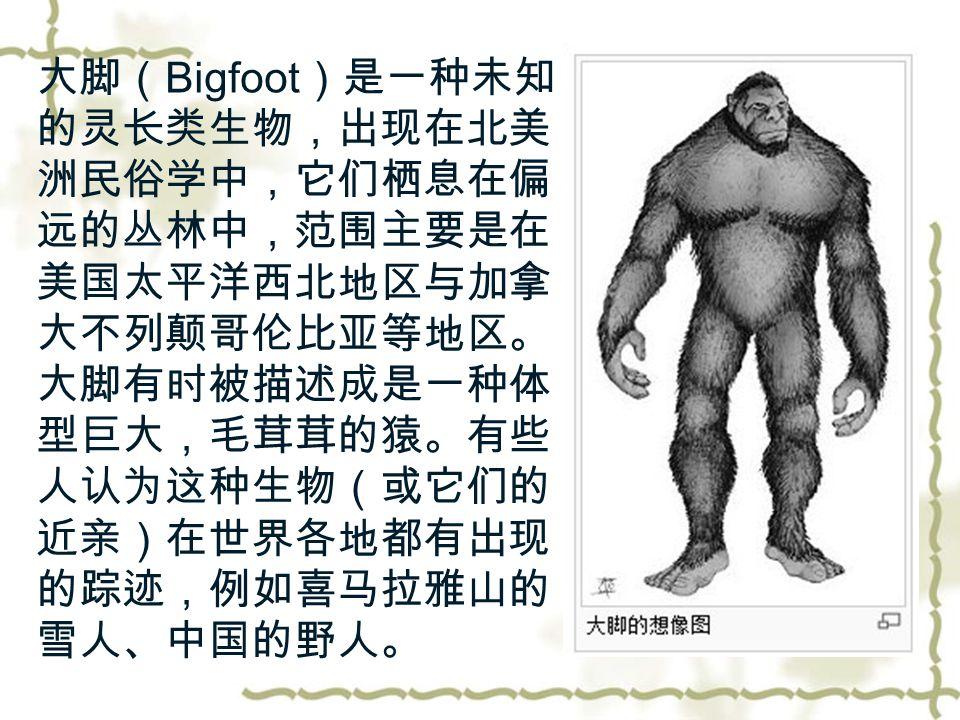 大脚( Bigfoot )是一种未知 的灵长类生物,出现在北美 洲民俗学中,它们栖息在偏 远的丛林中,范围主要是在 美国太平洋西北地区与加拿 大不列颠哥伦比亚等地区。 大脚有时被描述成是一种体 型巨大,毛茸茸的猿。有些 人认为这种生物(或它们的 近亲)在世界各地都有出现 的踪迹,例如喜马拉雅山的 雪人、中国的野人。