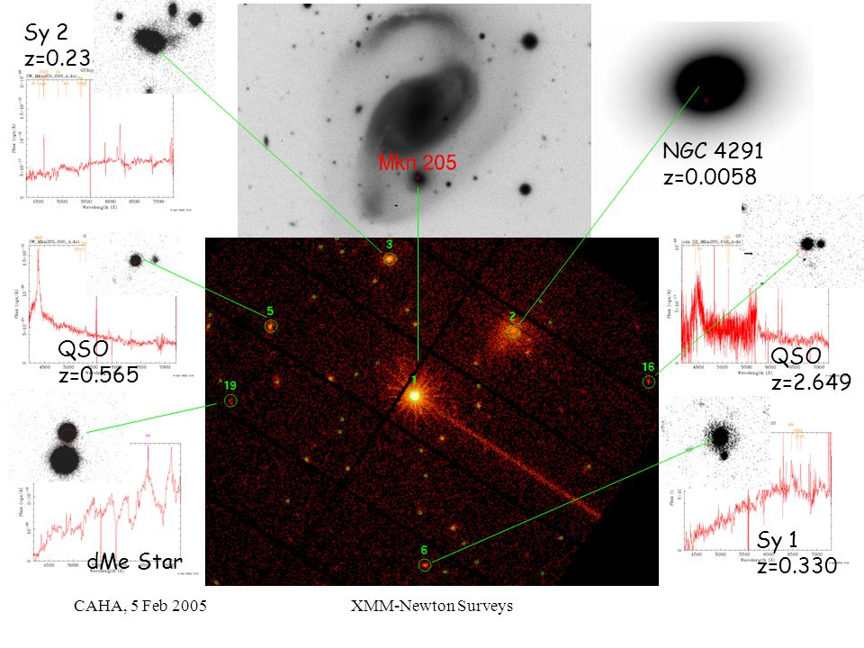 CAHA, 5 Feb 2005XMM-Newton Surveys dMe Star QSO z=0.565 Sy 2 z=0.238 NGC 4291 z=0.0058 QSO z=2.649 Sy 1 z=0.330